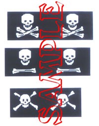 Pirate Flags #2