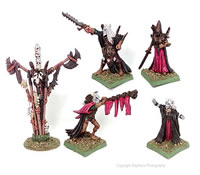 Death Elf King and Retinue